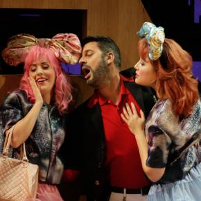 Opéra de Toulon, 2014 - La Cenerentola - Elisa Cenni, David Menendez, Caroline Meng